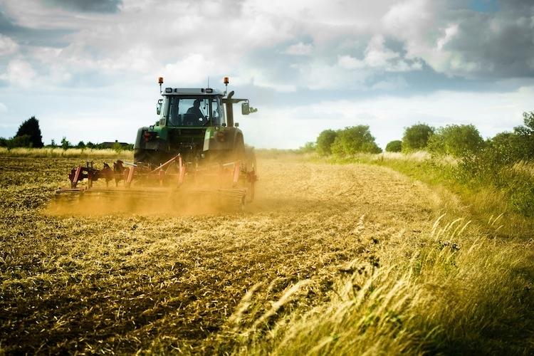 """Programma di Sviluppo Rurale: Sotto Misura 4.1 – """"Sostegno ad investimenti nelle aziende agricole"""""""